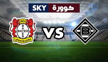 مشاهدة مباراة باير ليفركوزن ضد بوروسيا مونشنغلادباخ بث مباشر الدوري الالماني الأحد 08-نوفمبر-2020